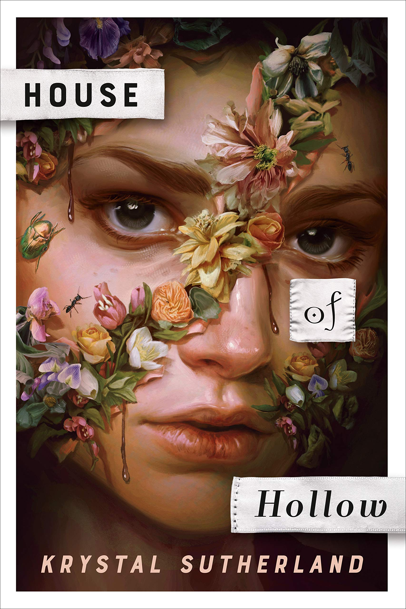 house of hollow book cover